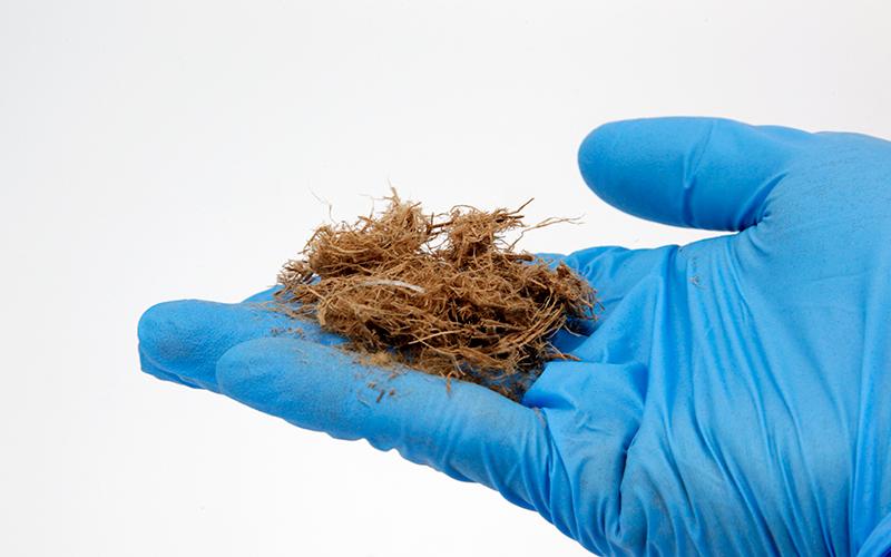 喷播木纤维