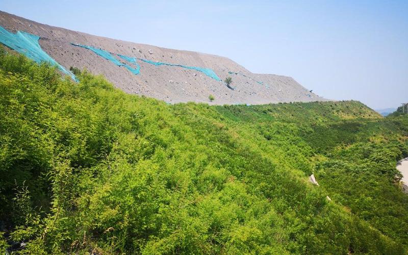 椰丝植生毯在华中某矿山修复中的成功运用