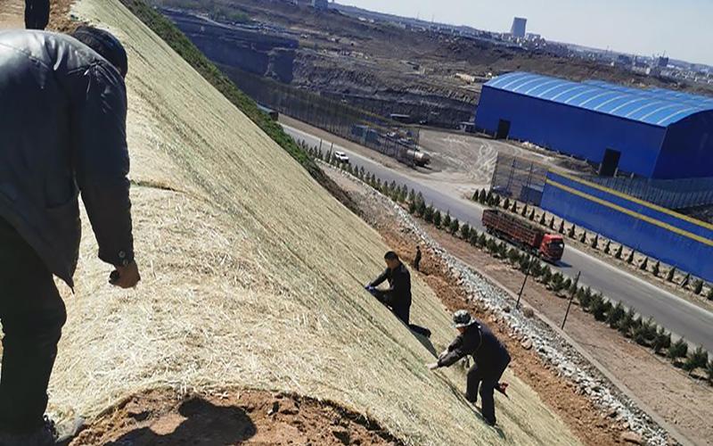 秸秆植物纤维毯用在内蒙矿区边坡绿化案例