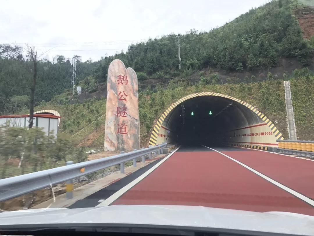 隧道两旁也采用植物纤维毯的生态防护