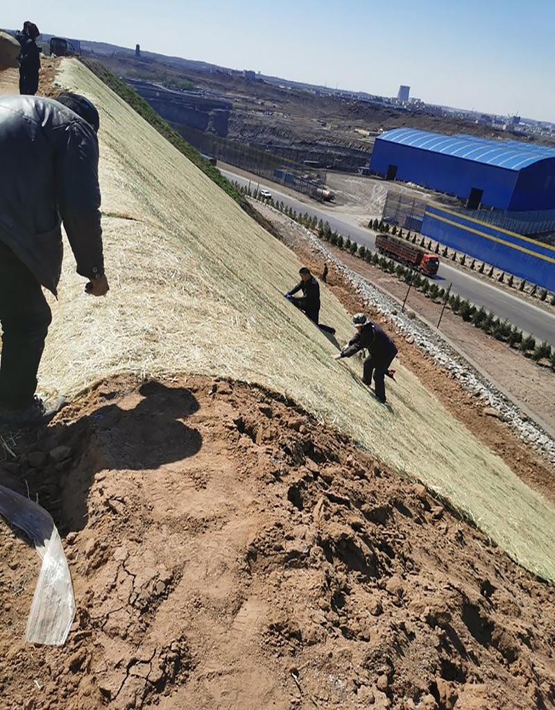 秸秆植被毯用在内蒙矿区边坡绿化